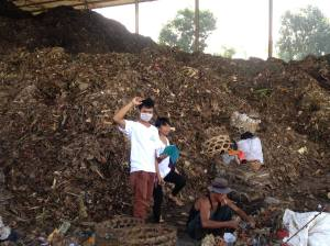 Sorting the garbage at Temesi