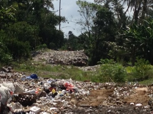 Illegal dump in Gianyar Regency