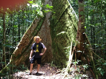 Standing near wide buttress roots of rainforest trees