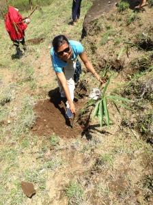 Murni Plantiing Bamboo in Songam Village