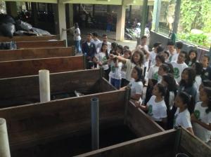 Su.pardi of Rumah Kompos PadangTegal showing us how they make compost
