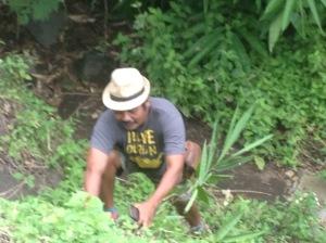 Kadek Gunarta tends to his newest children: 5,000 bamboo plants